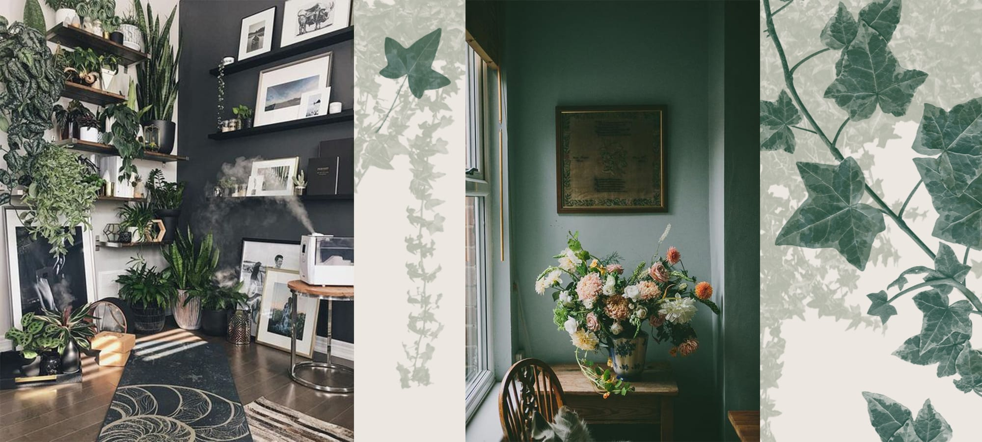 Plants and Flowers for Interior Design